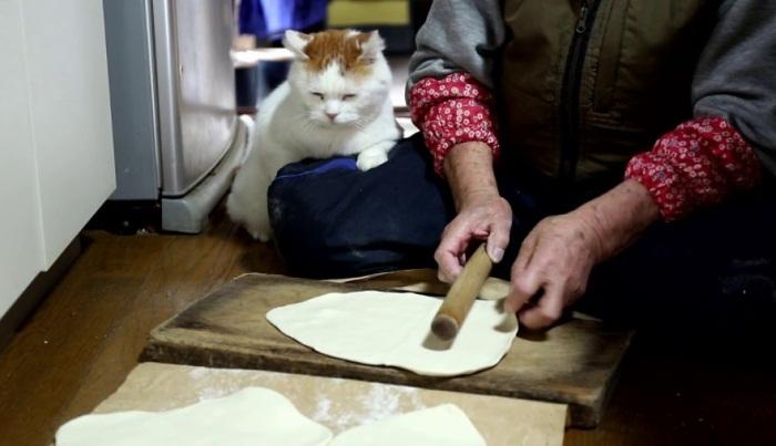 Shiro Supervising Human