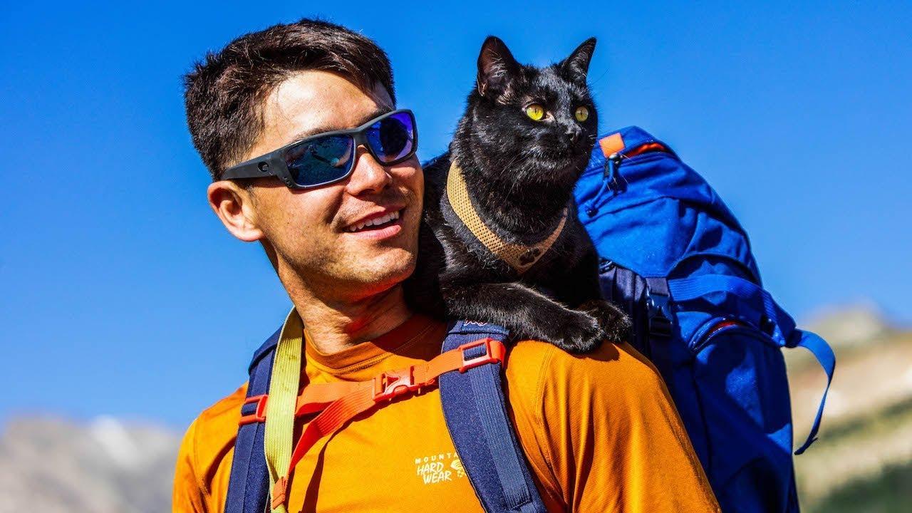 Simon, the cat that love adventures in nature