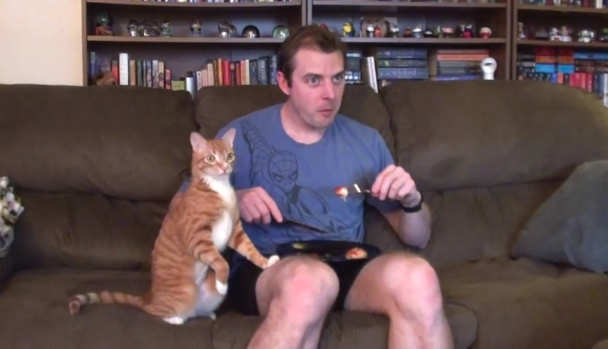 Trying To Eat With Cats Around