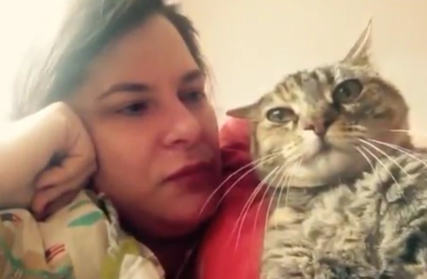 Cat Says No To Kisses On The Head