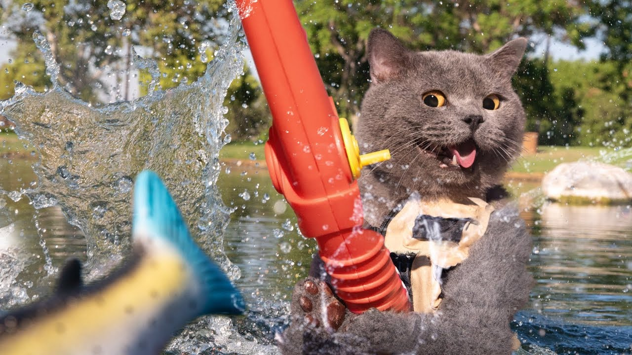 When a cat goes fishing