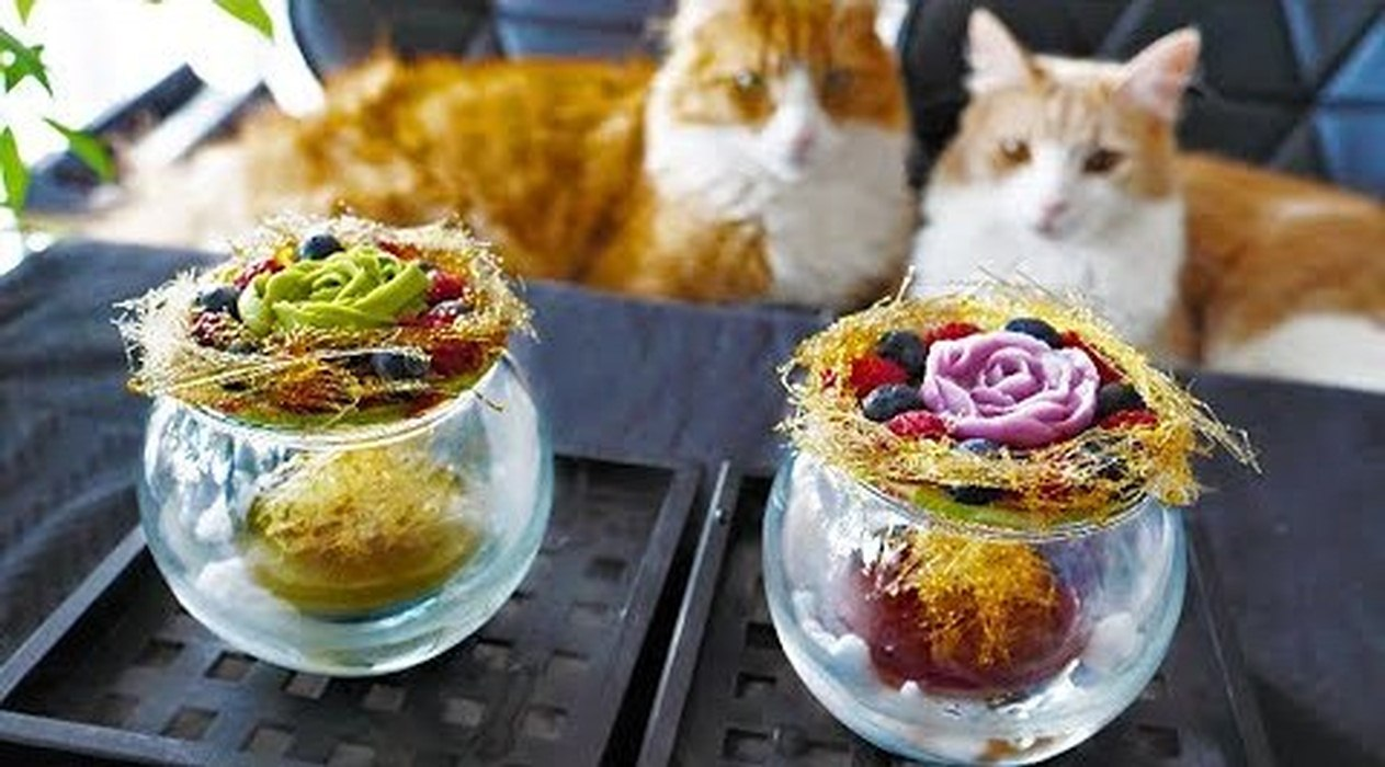 Cats and cooking - Homemade Yogurt