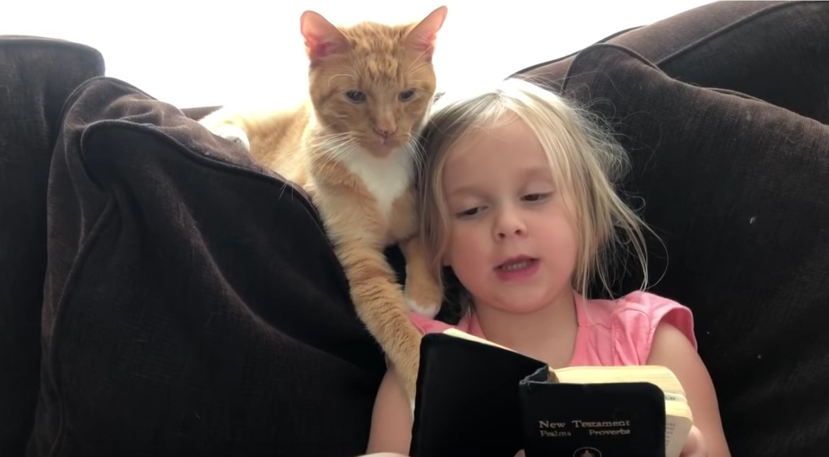 Cute Girl Reads Something To Cat
