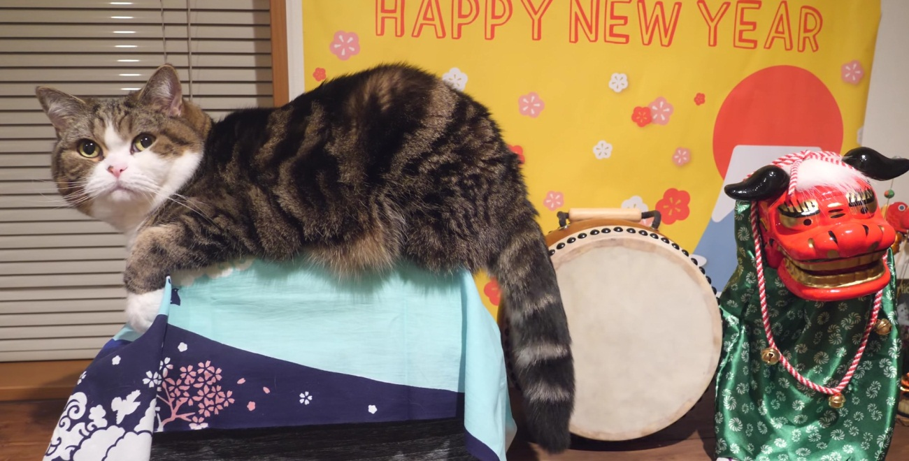Happy New Year From Maru