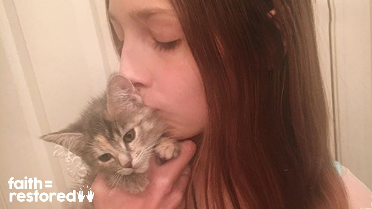 12-year-old girl dedicates all her free time fostering kittens