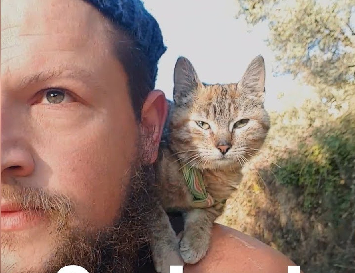 A cyclist traveling around the world finds a great travel companion, a stray kitten