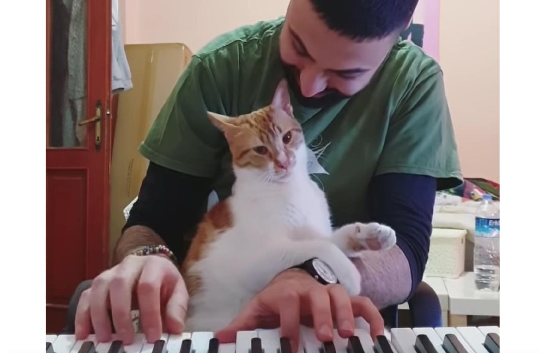 Kitty Loves Piano