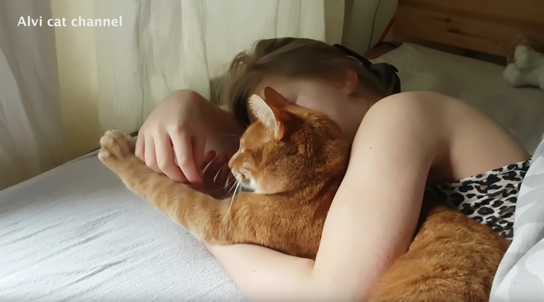 10 Signs Your Cat Really Loves You
