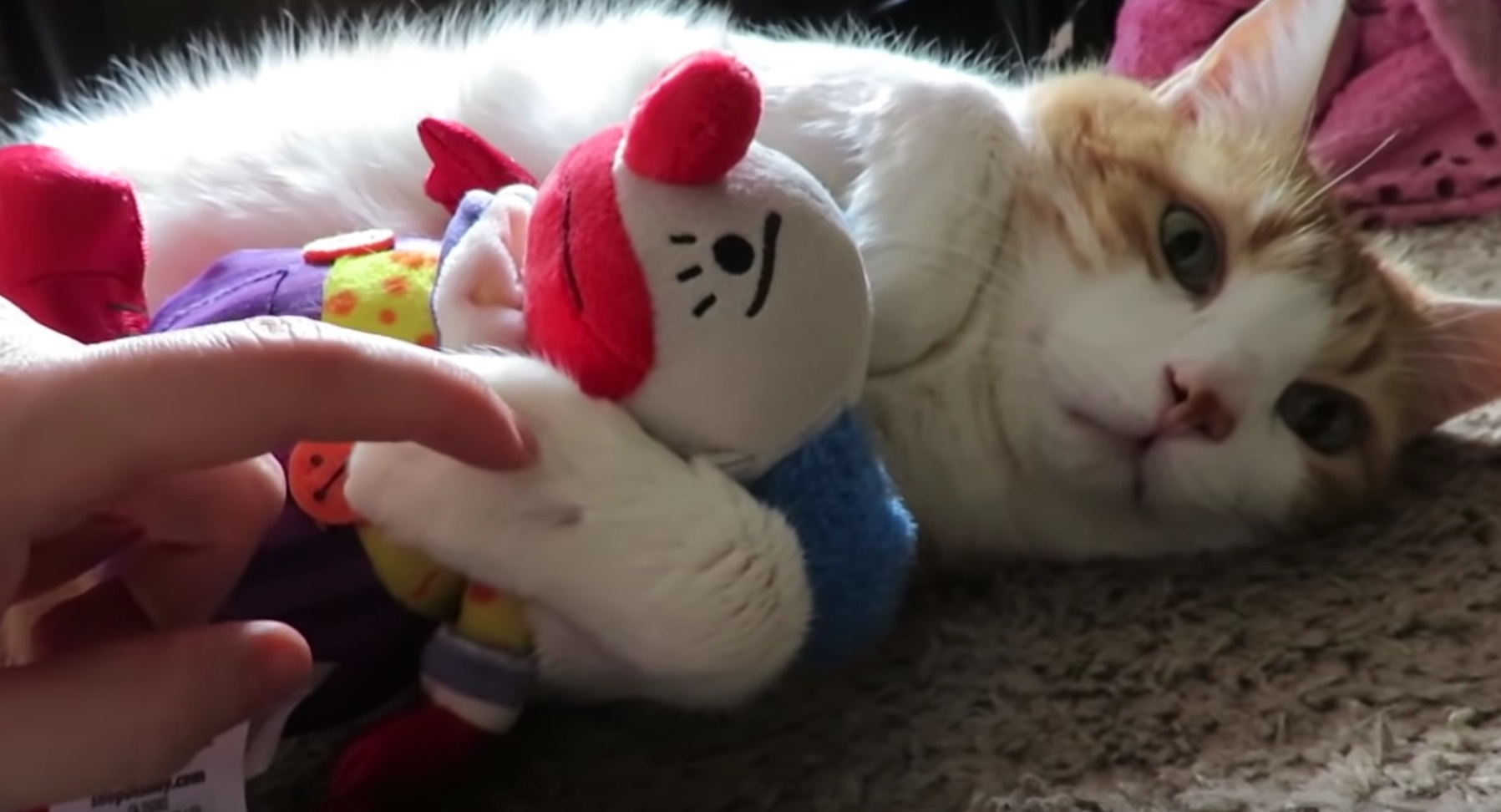 Butters Cuddling With Toy