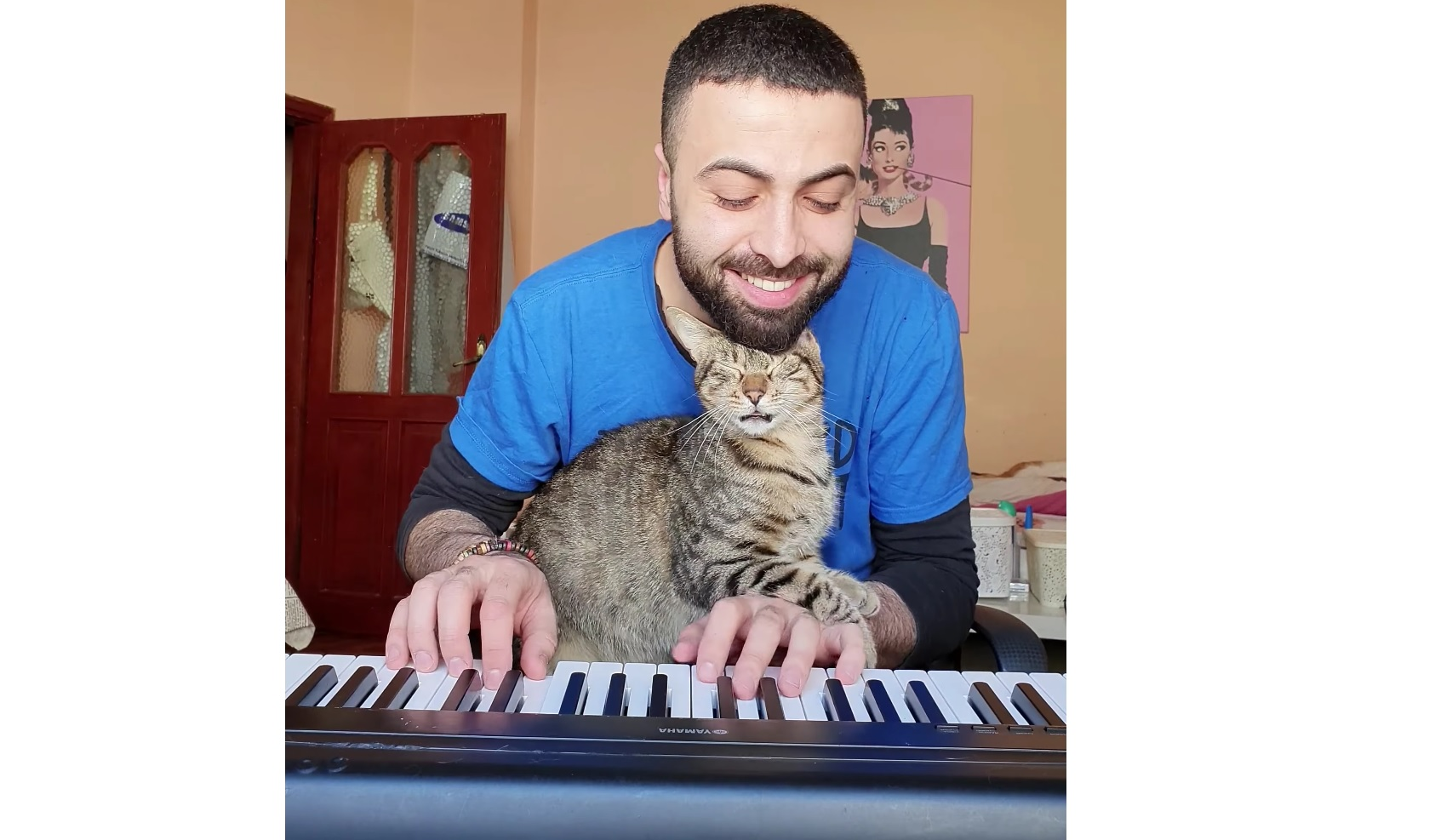 Cat Really Loves The Music