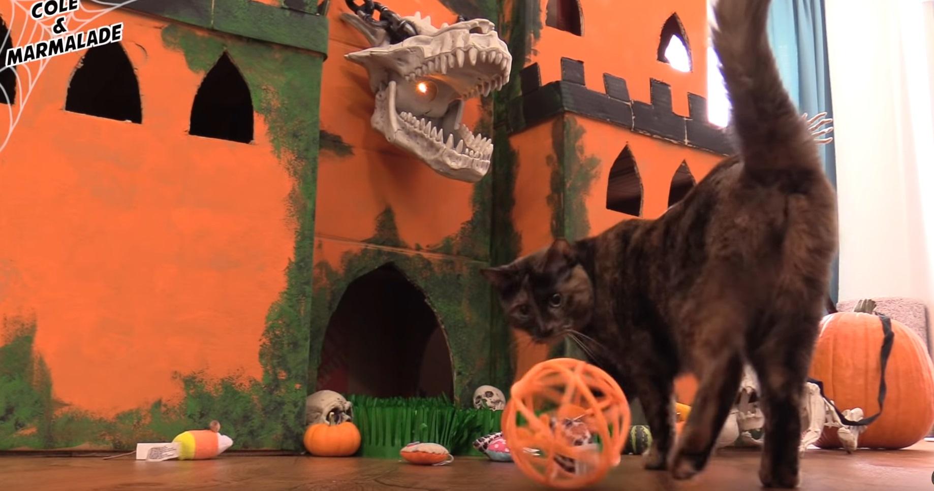 SPOOKTACULAR Halloween Cat Castle