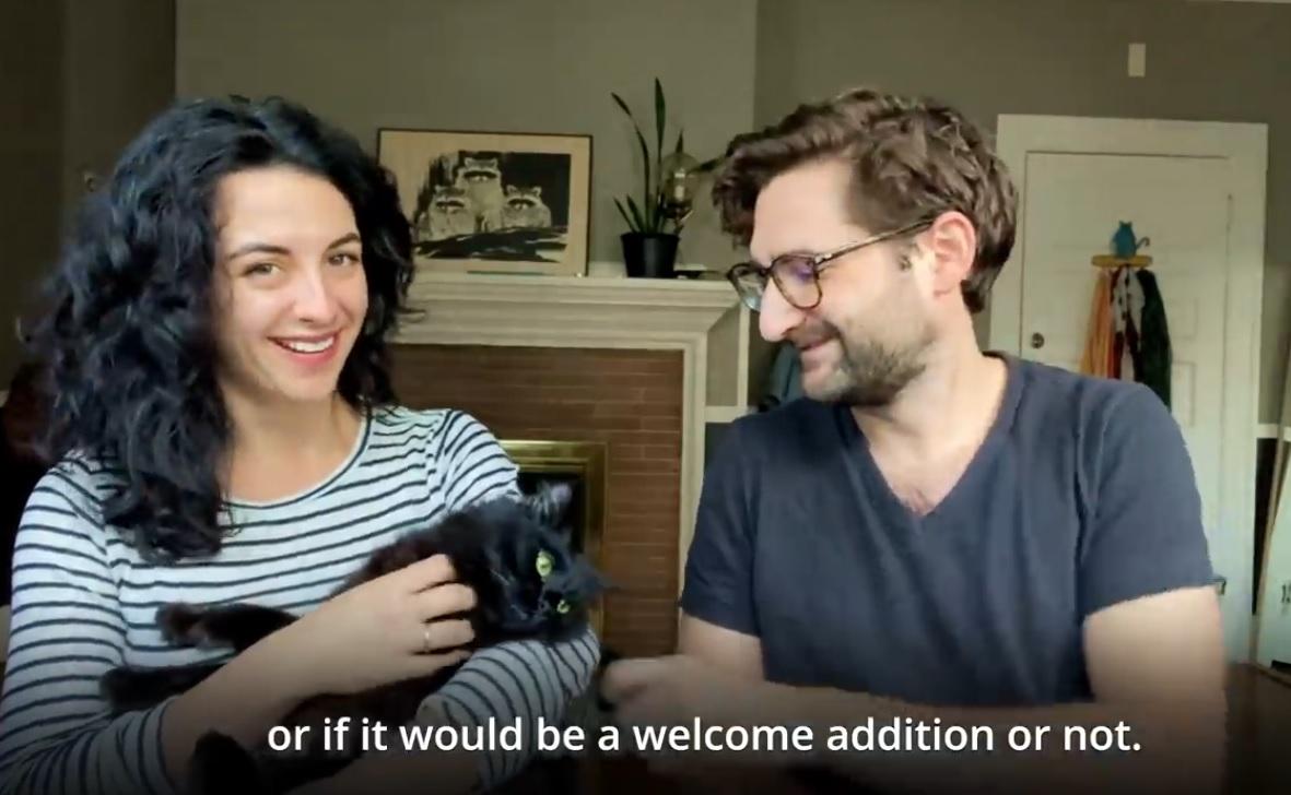 Owl Kitty : Adoption Story