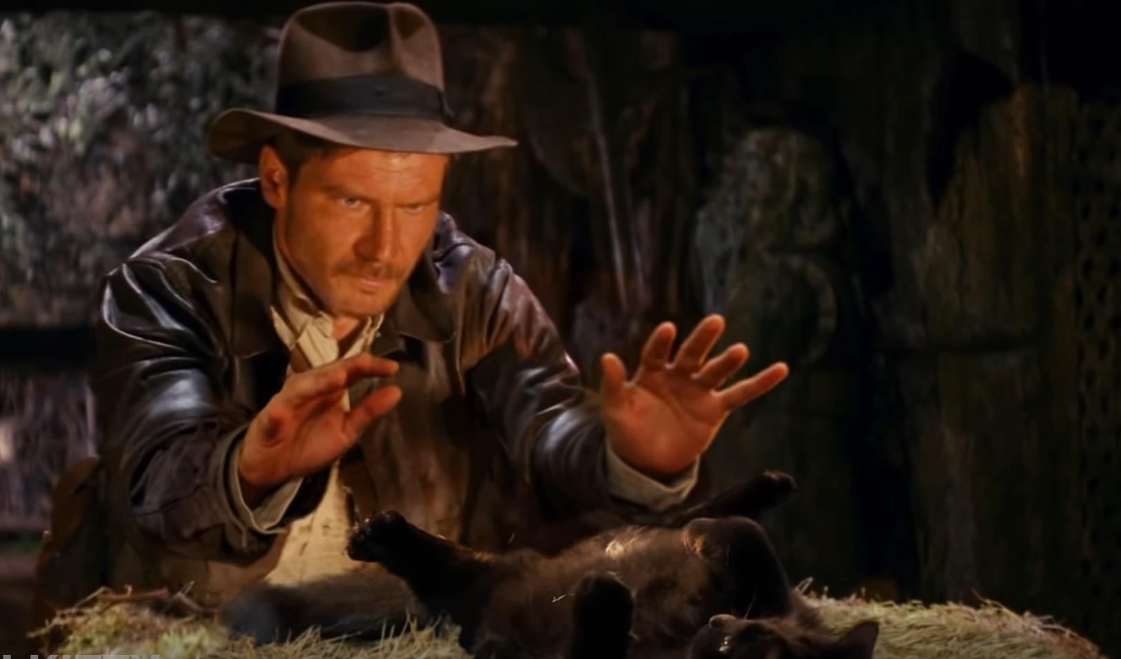 Indiana Jones With Owlkitty