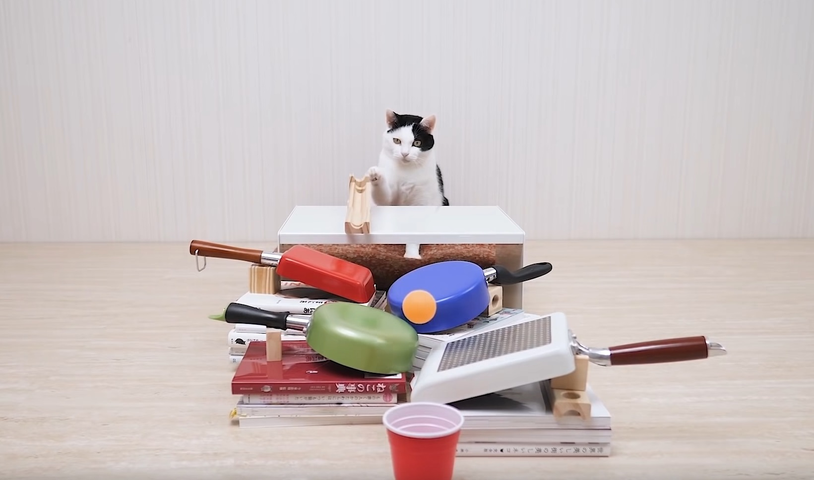 Cats And Ping Pong Tricks