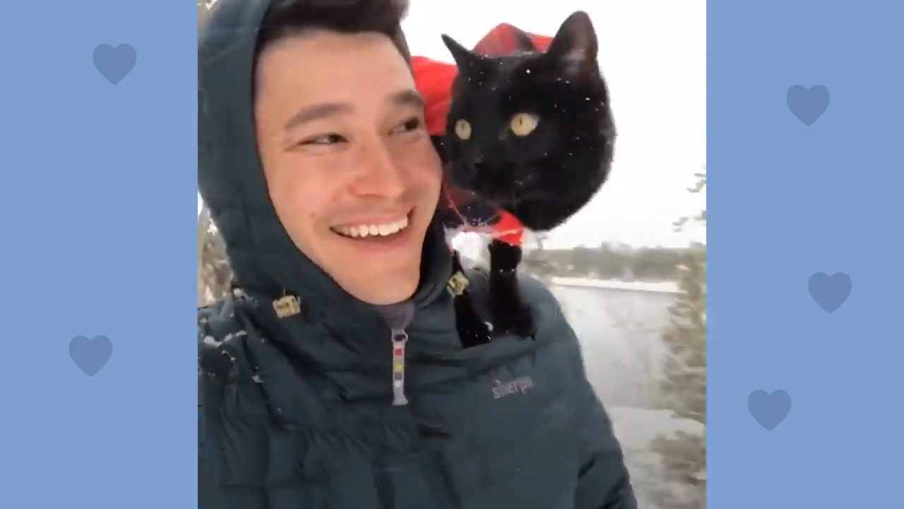 Black cat and his hooman go on all sorts of adventures together