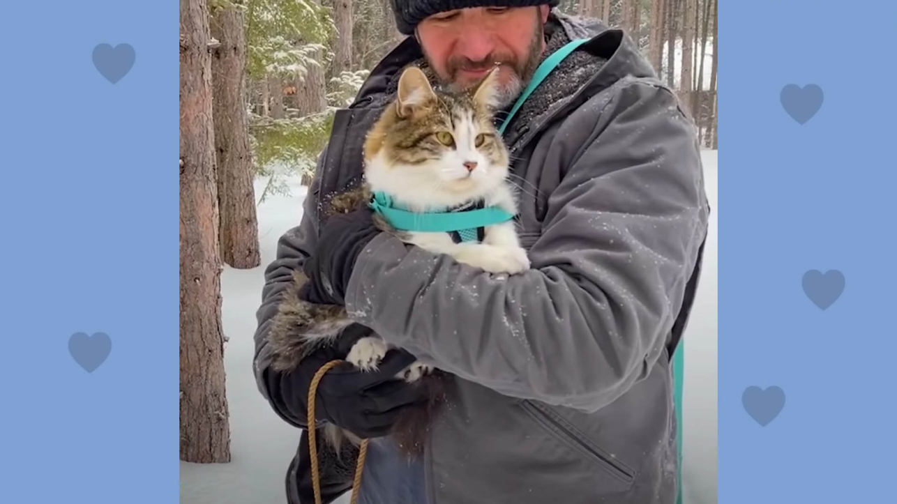'Dog Person' Dad becomes a Cat Dad when he meets Leo