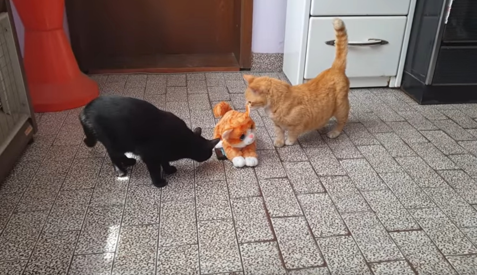 Pranking Cats With Fake Cat