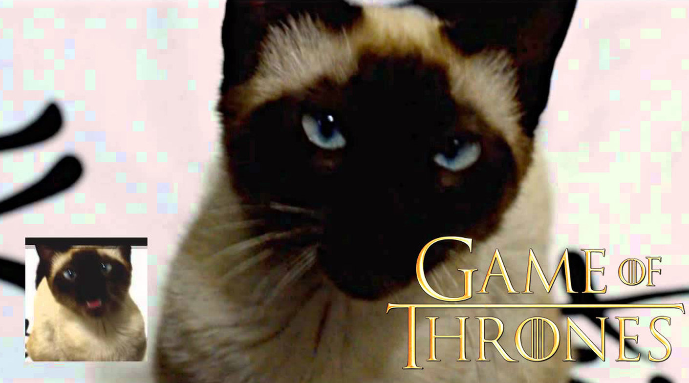 Game of Thrones theme song - Cat version
