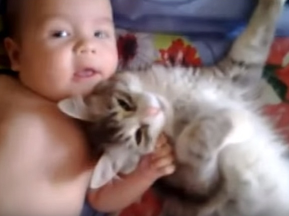 Cute Cat Loves Baby