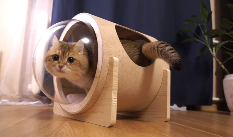 Hosico's Space Station